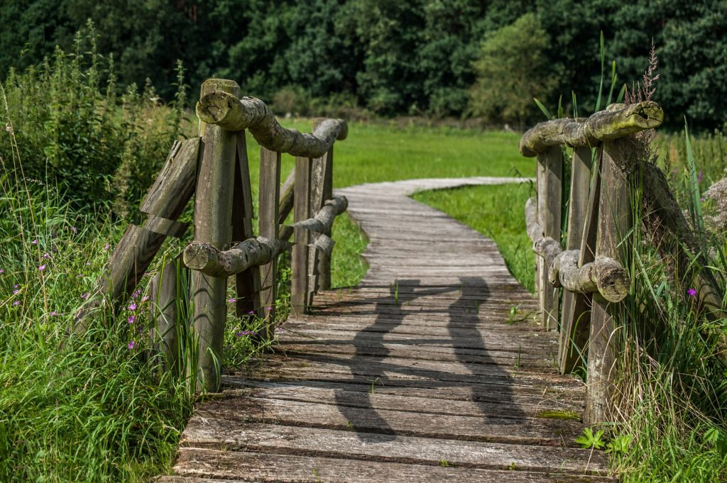 Picture of rough wood bridge and a trail
